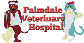 Palmdale Veterinary Hospital